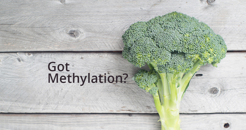 6 Steps to Improving Methylation